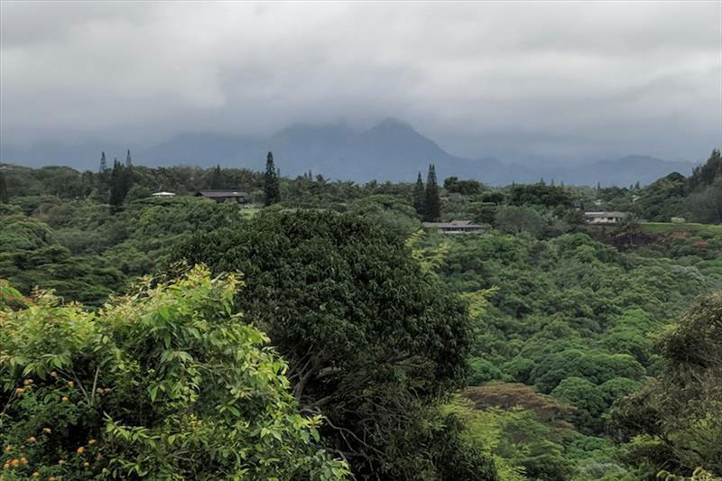 https://beachandbluff.com/wp-content/uploads/2018/10/hanalei-mtns.jpg